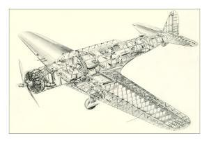 Cutaway Illustration of Aircraft