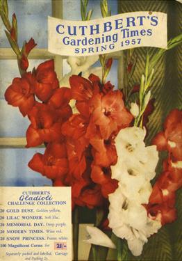 Cuthbert's Gardening Times, 1957, UK
