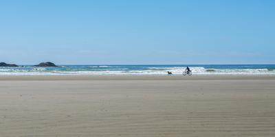 Cyclist and dog on Long Beach, Pacific Rim National Park Reserve, Vancouver Island, British Colu...