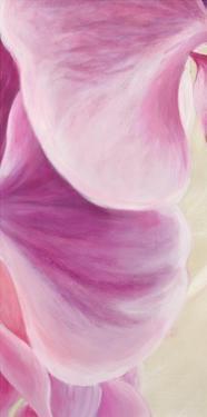 Purple Orchids II by Cynthia Ann