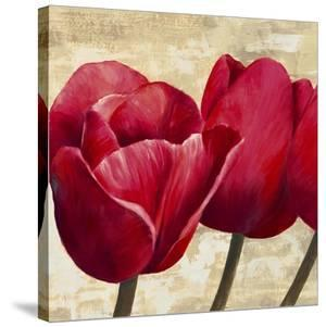 Red Tulips (detail) by Cynthia Ann