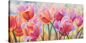 Tulips in Wonderland by Cynthia Ann