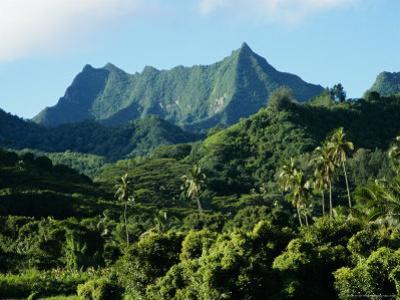 Dense Forests and Mountain Ppeaks, Rarotonga, Cook Islands, Polynesia