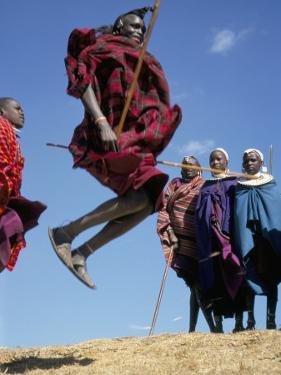 Masai Warriors Perform Jumping Dance, Masai Mara National Park, Kenya, East Africa, Africa by D H Webster