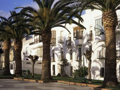 Spanish Architecture and Palm Trees, Tarifa, Andalucia, Spain