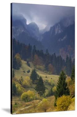Rock of the King, Piatra Craiului National Park, Transylvania, Carpathian Mountains, Romania by D?rr