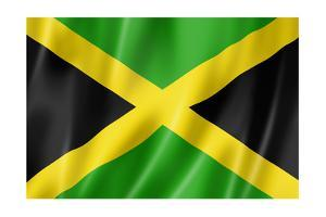 Jamaican Flag by daboost