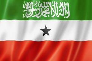 Somaliland Flag by daboost