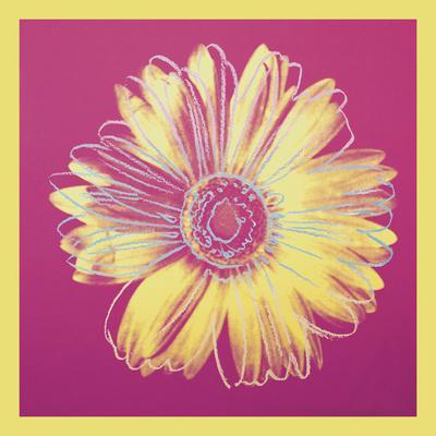 https://imgc.allpostersimages.com/img/posters/daisy-c-1982-fuchsia-yellow_u-L-F8CG600.jpg?p=0