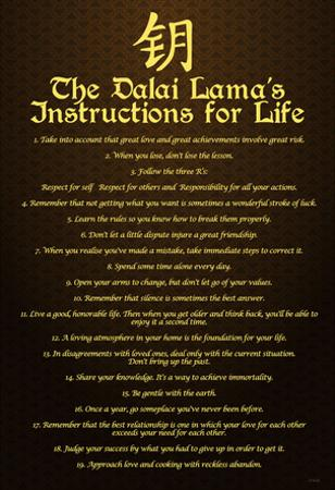 Dalai Lama (Instructions For Life) Art Poster Print