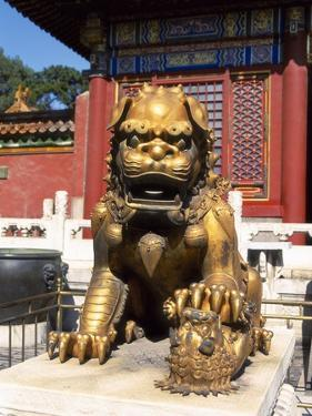 Guardian Lion at Forbidden City on Tiananmen Square, Imperial Palace, Beijing, Dongcheng District, by Dallas and John Heaton