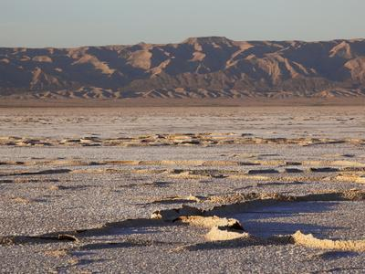 Chott El Jerid, Flat Dry Salt Lake Between Tozeur and Kebili, Tunisia, North Africa, Africa