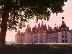 North Facade in the Early Morning, Chateau De Chambord, Loir-Et-Cher, Loire Valley, France by Dallas & John Heaton