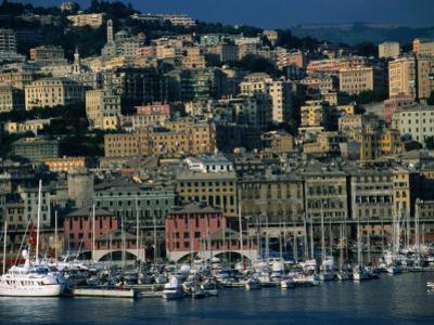City Above Port and Marina, Genova, Liguria, Italy by Dallas Stribley