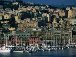 City Above Port and Marina, Genova, Liguria, Italy by Dallas Stribley