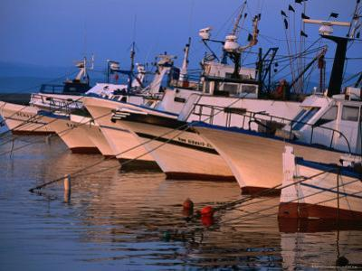 Fishing Boats in Porto Calasetta, Sant' Antioco, Sardinia, Italy