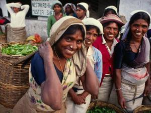 Tea Pickers Outside Factory, Uva, Sri Lanka by Dallas Stribley