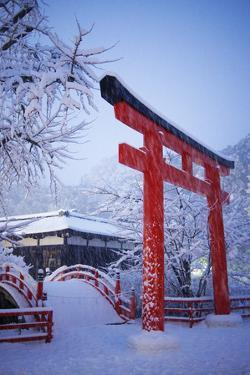 Blue hour in Shimogamo Shrine, UNESCO World Heritage Site, during the largest snowfall on Kyoto in by Damien Douxchamps