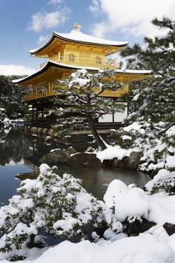Golden Pavilion (Kinkaku-ji), UNESCO World Heritage Site, in winter, Kyoto, Japan, Asia by Damien Douxchamps