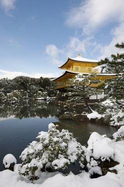 Kinkaku-ji Temple (Golden Pavilion), UNESCO World Heritage Site, in winter, Kyoto, Japan, Asia by Damien Douxchamps
