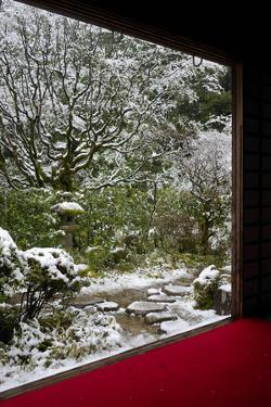 Koto-in Temple garden in snow, Kyoto, Japan, Asia by Damien Douxchamps