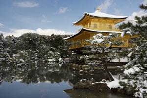 Snow-covered Kinkaku-ji (Temple of the Golden Pavilion) (Rokuon-ji), UNESCO World Heritage Site, Ky by Damien Douxchamps