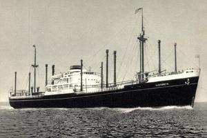 Dampfer M.S. Sloterdyk, Holland America Line