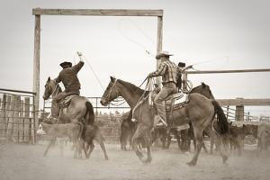Red Top Ranch by Dan Ballard