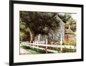 Daylilies by Dan Campanelli