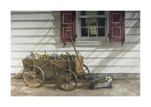 Pansies for Sale by Dan Campanelli