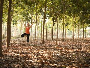 Lisa Eaton Practices Tree Pose in a Rubber Tree Plantation -Chiang Dao, Thaialand by Dan Holz