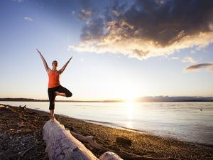Tree Pose During Sunset on the Beach of Lincoln Park, West Seattle, Washington by Dan Holz