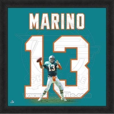Dan Marino, Dolphins photographic representation of the player's jersey