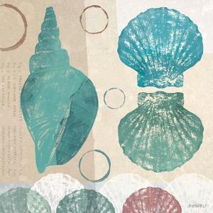 Shell Collage II by Dan Meneely