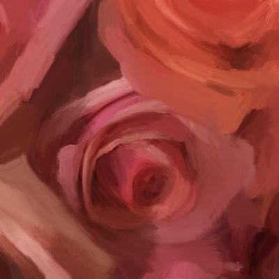 The Rose Maze