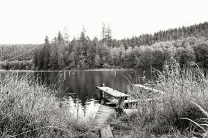 Baker Lake Dock by Dana Styber