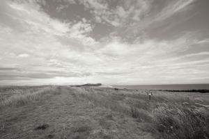 Bluff Path BW by Dana Styber