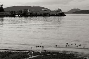 San Juan Ferry Dock I by Dana Styber