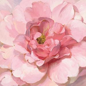 Blushing Peony by Danhui Nai