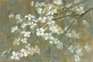 Dogwood in Spring by Danhui Nai