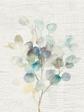Eucalyptus III Vintage by Danhui Nai