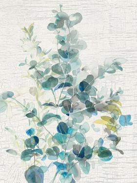Eucalyptus IV Vintage by Danhui Nai