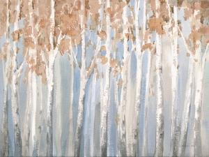Fall Birches by Danhui Nai