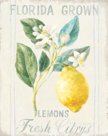 Floursack Lemon I by Danhui Nai