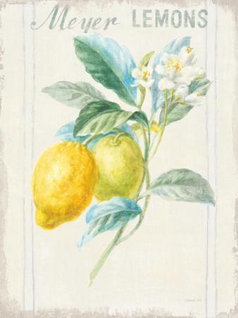 Floursack Lemon II v2 by Danhui Nai