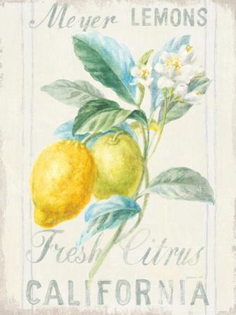 Floursack Lemon II by Danhui Nai