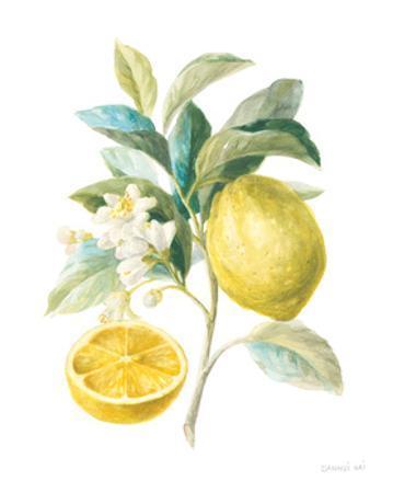 Floursack Lemon III on White by Danhui Nai