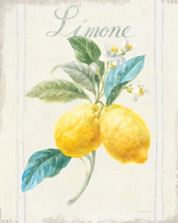 Floursack Lemon III v2 by Danhui Nai