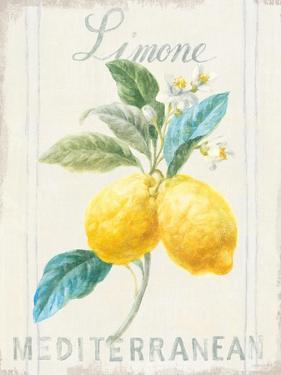 Floursack Lemon III by Danhui Nai