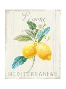 Floursack Lemon III by Danhui Nai